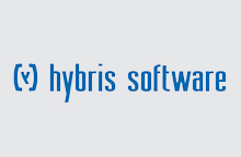 rapid development services